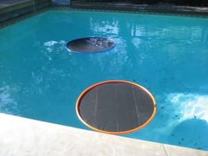 Lily Pad Pool Warmers